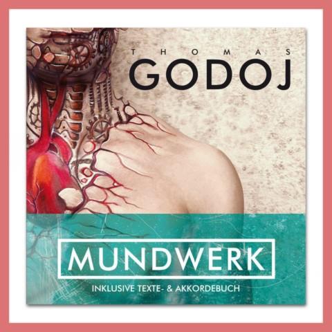 """Thomas Godoj auf """"Mundwerk Tour"""""""