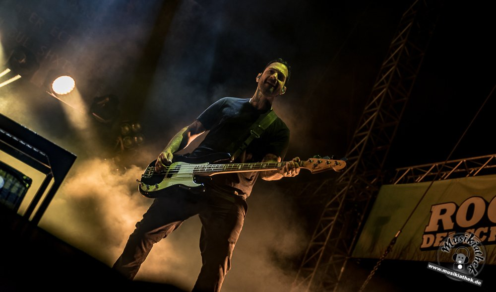 Rise against, Rocco 2017-14