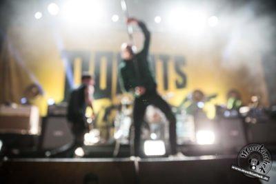 Donots-14